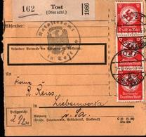 ! 1934 Paketkarte Deutsches Reich, Tost In Oberschlesien Nach Liebenwerda, Dienstmarken, Bogenrand - Briefe U. Dokumente