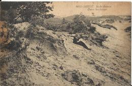 Heide  - Kalmthout - In De Duinen  (Uitgever Hoelen Nr 9051) - Kalmthout