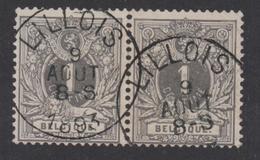 43 Obl. Lillois 1893 Paire/Paar - 1869-1888 Lion Couché