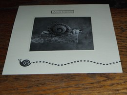 Escargot Escargots Anne Geddes - Other
