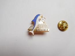 Superbe Pin's En EGF , La Poste , ASPTT Grenoble , Football , Dauphin , Isére , Non Signé - Correo