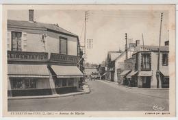 - St Brévin - Les - Pins : Avenue De Mindin. - Saint-Brevin-les-Pins