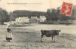 - Finistère -ref-E467- La Forêt Fouesnant - La Forêt De Fouesnant -vue Generale Anse Et Port - Fillette Et Sa Vache - - La Forêt-Fouesnant