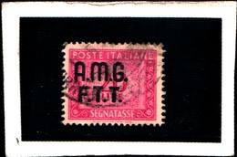 93428) ITALIA.- Trieste AMG-FTT- 1947-49- 10 LIRE-Segnatasse 2 RIGHE-Ruota USATO - 7. Triest