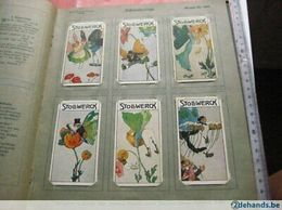 50 Cards Litho 1911dressed  Animals Elephant Frog  Dragonfly Fairy  Anthropomorphic ART NOUVEAU Stories VG Stollwerk - Other