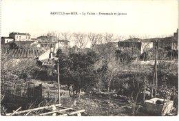 FR66 BANYULS SUR MER - La Vallée - Promenade Et Jardins - Belle - Banyuls Sur Mer