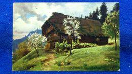 Frühling Im Switzerland - Svizzera