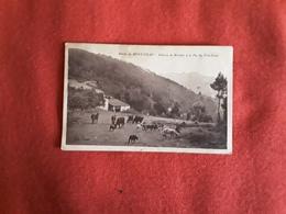 No  141 Loire 42  Mont Pilat  1938 - Mont Pilat