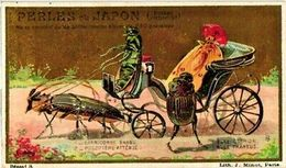6 Trade Cards Dressed Like Humans SET Insects Cockchafer May Bug Beetle Grashopper Litho Anthropomorph C1900 Litho VG - Other