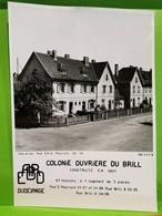ARBED, Dudelange. Colonie Ouvriere Du Brill. Rue Émile Mayrisch - Dudelange