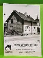 ARBED, Dudelange. Colonie Ouvriere Du Brill. Rue Du Parc - Dudelange