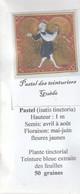 Pastel Des Teinturiers-Guède -Isatis Tinctoria - Sachet De 50 Graines - Pas De Pesticides- Bio - Recolté En Montagne - 2. Semi