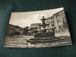 CONCHIGLIA Shell COQUILLES CONCHAS CONCH MUSCHEL PARTICOLARE FONTANA MESSINA PIAZZA GIUSEPPE SEGUENZA - Messina