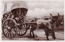 ROMA, COSTUMI ROMANI, CARRETTIERE A VINO. ITALIE CARTE POSTALE CIRCA 1900's NON CIRCULEE -LILHU - Transports