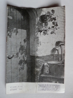 LA GAZETTE APICOLE N°443 Oct 1941 Araigniées Thomises, Maladies Des Abeilles, Miel De France, Production Cire Soudan - 1900 - 1949