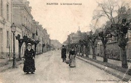 L'avenue Camus - Nantes