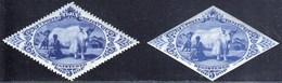Tannu Tuva, Touva 1934 / Local Motif / Melkerin, Milkman, Yak, Cow / Registered / MNH - Tuva