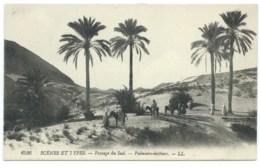 CPA ALGERIE / PAYSAGE DU SUD PALMIERS DATTIERS / NEUVE - Women