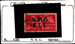 93443) ITALIA.- Trieste AMG-FTT-60 LIRE-Democratica, Soprastampa Su Due Linee - ESPRESSI - 1947- USATO - 7. Trieste