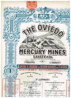 Titre Ancien - The Oviedo Mercury Mines Limited - Titre De 1907 - Déco - Imprimerie G. Richard - - Mines