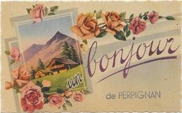 PERPIGNAN : UN BONJOUR DE... - Perpignan