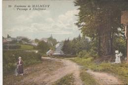 MALMEDY /  PAYSAGE A XHOFFRAIX - Malmedy