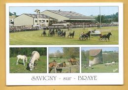 C.P.M. Savigny-sur-Braye - L'Hippodrome, Les Fjords Et Le Haras - Frankreich
