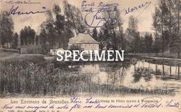 L'étang De Pêche Royale à Watermael-Boitsfort - Watermael-Boitsfort - Watermaal-Bosvoorde
