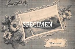 Souvenir De Watermael-Boitsfort - Watermael-Boitsfort - Watermaal-Bosvoorde