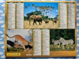 CALENDRIER DU FACTEUR ALMANACH ANIMAUX DE LA SAVANE ZEBRE LIONNE ELEPHANT GUEPARD 2005 - Calendriers