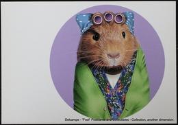 Famous Faces TAKKODA Pets Celebrity Photography Célébrités Animal Photographie Cobaye Bigoudis Guinea Pig Hair Curlers - Animaux Habillés
