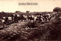 TIBET. DU YUNNAN AU THIBET LES CARAVANES. FROM YUNNAN TO THIBET THE CARAVANS  (N-/LOT 3064 - Tibet