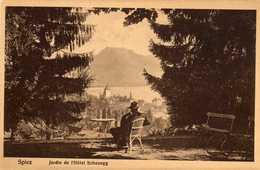SUISSE  SPIEZ  Jardin De L'Hôtel Schonegg - BE Berne