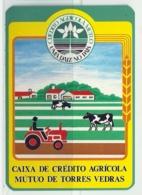 1988 Pocket Calendar Calandrier Calendario Portugal Bancos Banks Banques Caixa Crédito Agricola - Calendars