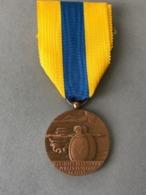 MEDAILLE De La SOMME  (Provenant Du Cadre Vitrine Fabriqué Par Le Propriétaire Sculpteur J. T, Cadre Non Compris) - Médailles & Décorations