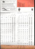 Horaires BRITISH RAILWAYS 1979 Inter City CASNEWYDD CAERDYDD ABERTAWE NEWPORT CARDIFF SWANSEA - Europe