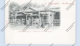 RU 190000 SANKT PETERSBURG, Maison De Pierre De Grand, Ca. 1900 - Russland