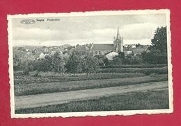 C.P. Sugny =  Panorama - Vresse-sur-Semois