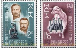 Ref. 67580 * MNH * - MALTA. 1964. CONGRESS OF THE FIGHT AGAINST MALT FEVER . CONGRESO DE LA LUCHA CONTRA LA FIEBRE DE M - Malta (...-1964)