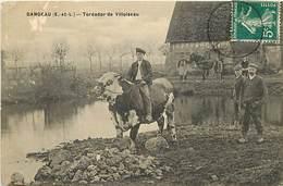 - Eure Et Loir -ref-A235- Dangeau - Toréador De Villoiseau - Jeune Paysan Monté Sur Un Taureau - Taureaux - Elevage - - Autres Communes