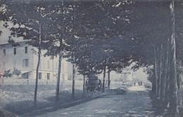 CASINO BOARIO-BRESCIA-IL VIALE-CARTOLINA VIAGGIATA IL 8-9-1914 - Brescia