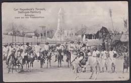 Ansichtskarte Hagenbeck's Tierpark Hamburg - Gebraucht  - 1909 Nach Verden - Stellingen