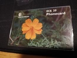 ANTIGUA  $20,-,- CHIPCARD FLOWER ORANGE COSMOS    Fine Used Card  ** 517 ** - Antigua And Barbuda