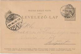 "Ungarn Karte Mit Bahnpoststempel /  Railway / TPO ""8 Pragerhof - Budapest"" - Hungary"