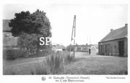 34 Gehucht Varewinkel Ten Z.  Van Westmeerbeek - Varenwinkel - Herselt - Herselt