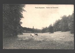 Ukkel / Uccle - Petite-Espinette - Vallon De Grasdelle - Vache / Koe / Cow - Uccle - Ukkel
