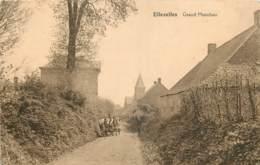 Belgique - Ellezelles - Grand Monchau - Attelage - Ellezelles