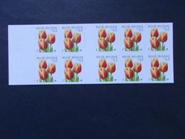 BELGIQUE  - CARNET   -  N° B 34  Année  2000  Valeur Permanente  ZONE A Europe  ( Voir Photo ) - Postzegelboekjes 1953-....