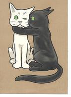FANTAISIE  CHAT  GROS PLAN  CHAT BLANC E CHAT NOIR  DESSIN - Cats