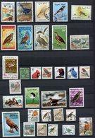 Lot De Timbres - Thématique Oiseaux - Unclassified